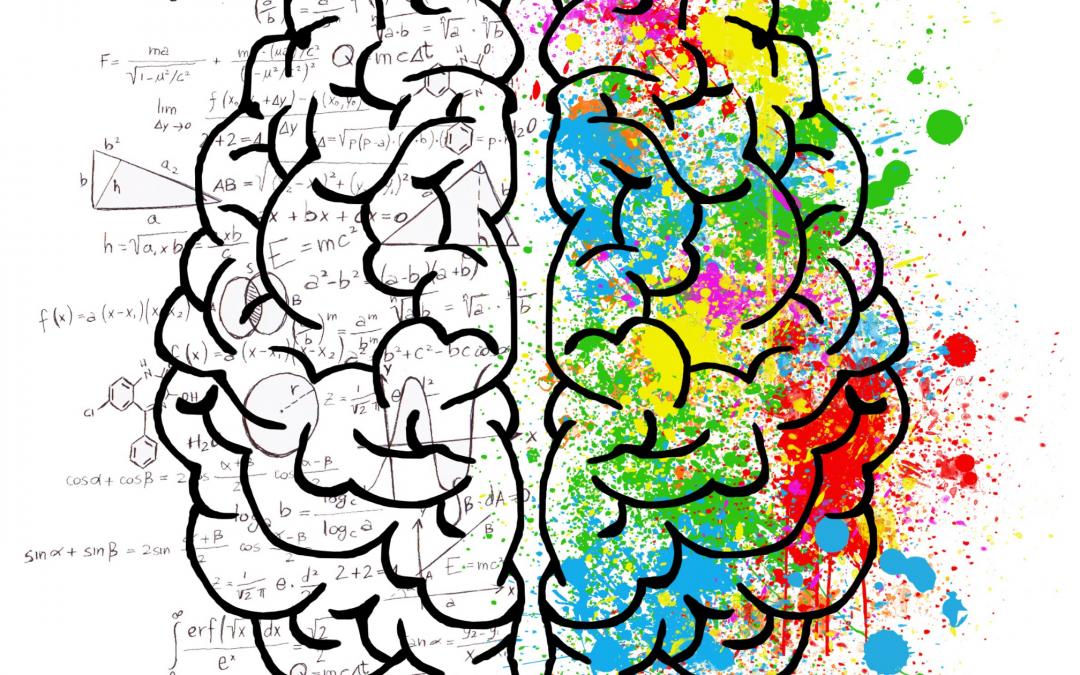 Cerveau coloré et formules mathématiques